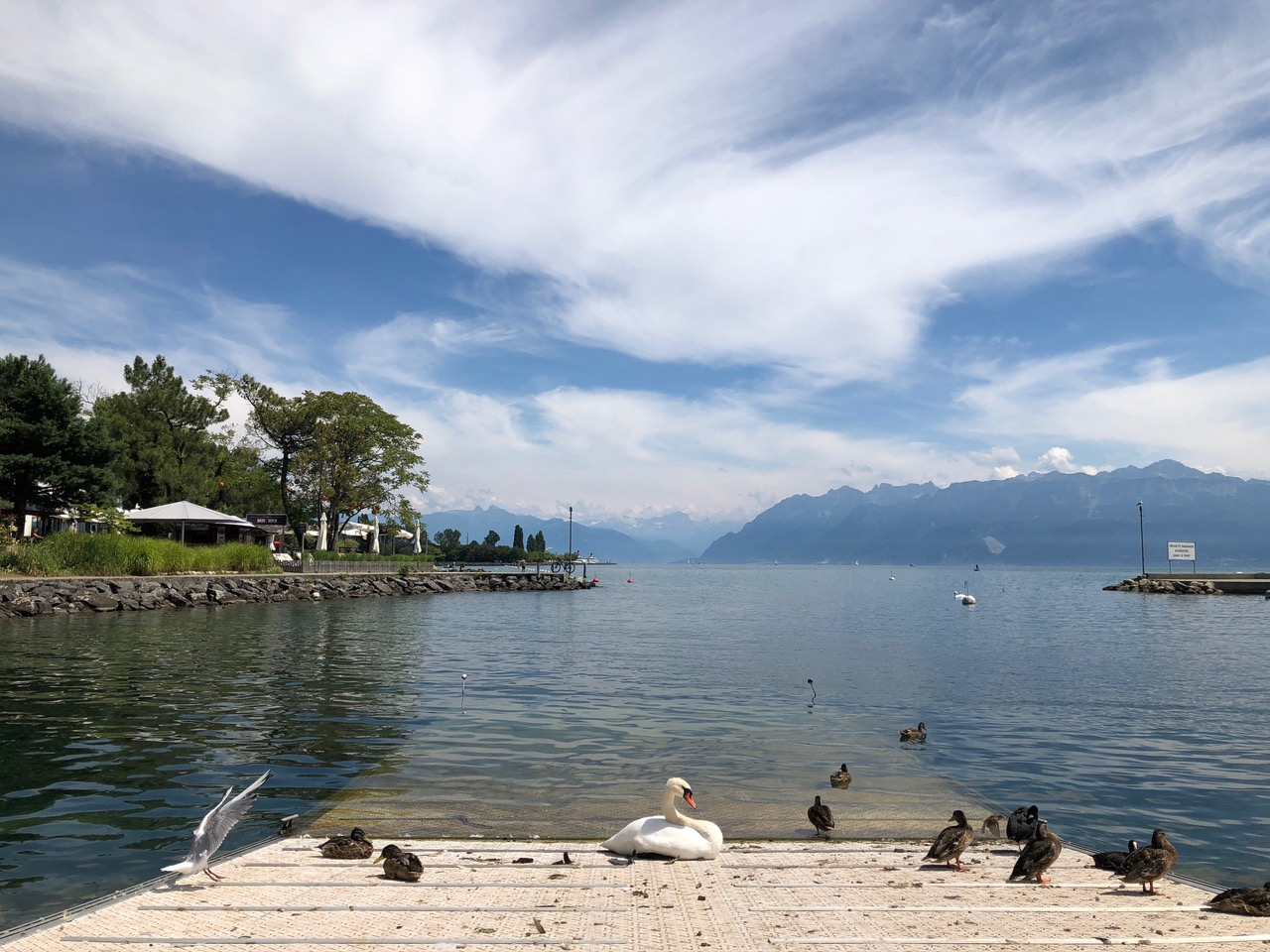 Lake Geneva from Lausanne