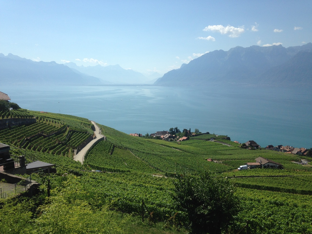 Walking through the Lavaux vineyards, eastern Lake Geneva