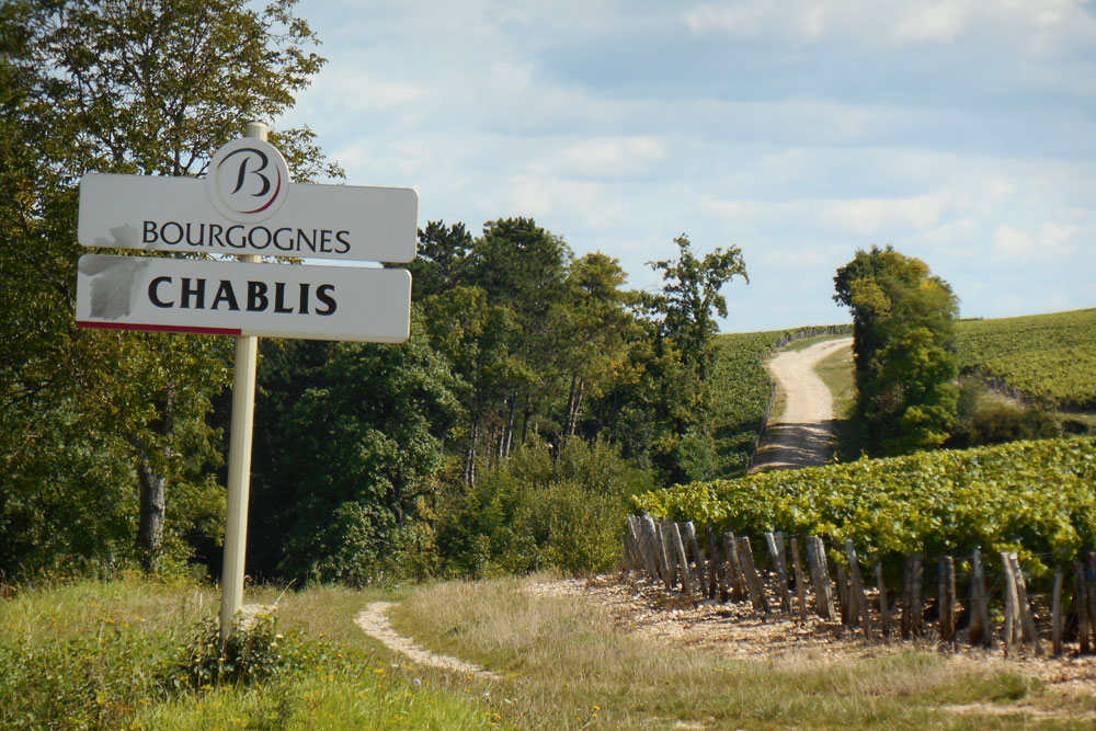 Chablis vineyards through the windscreen of your motorhome