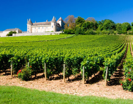 Plan a tour of French vineyards in your motorhome