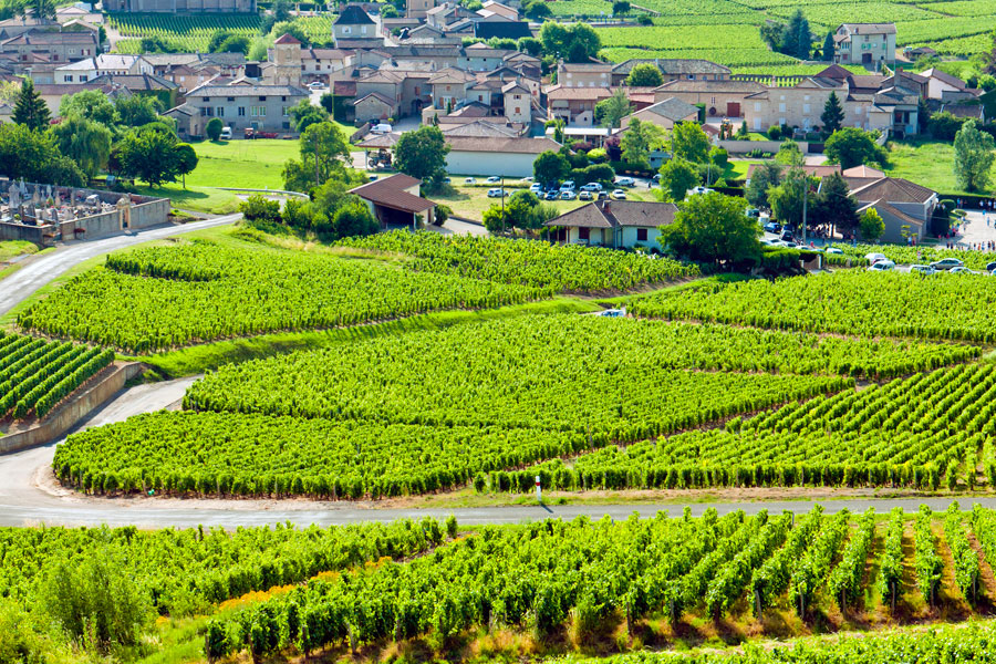 Burgundy wine regions are a delight to explore with a pretty village nestling in every valley